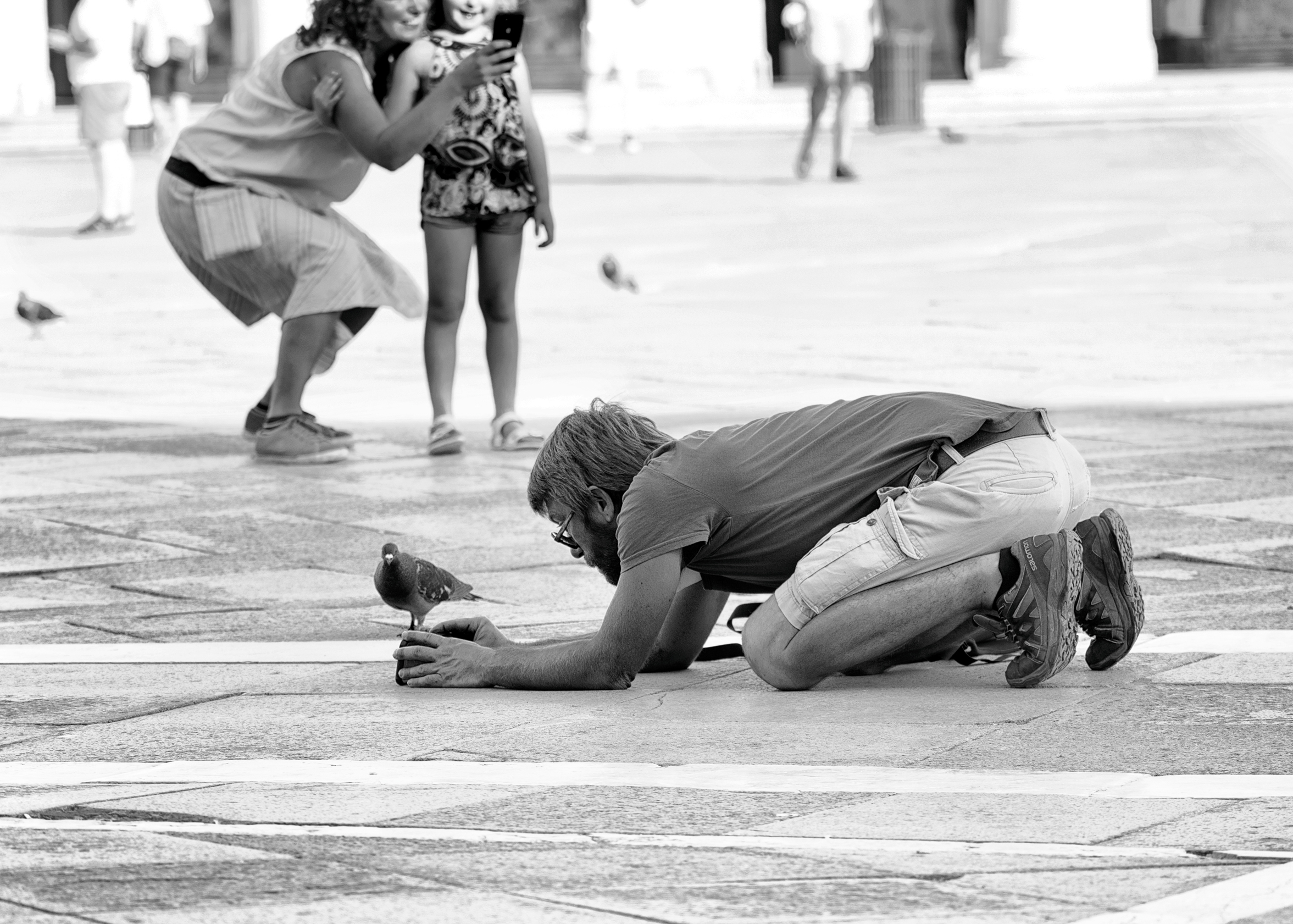 Venice street photography Pigeon posing Aleksandra Rowicka