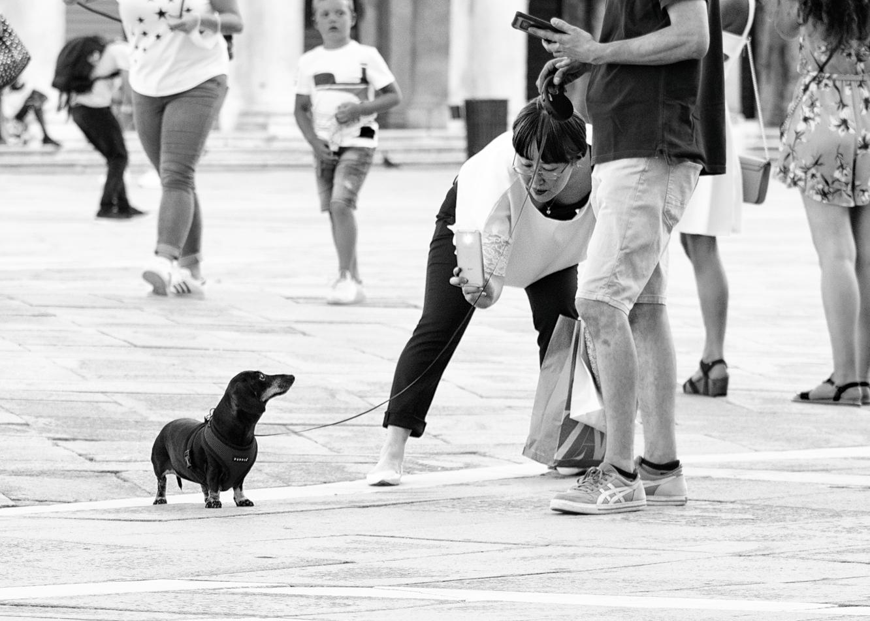 Venice street photography Family Photograph Aleksandra Rowicka