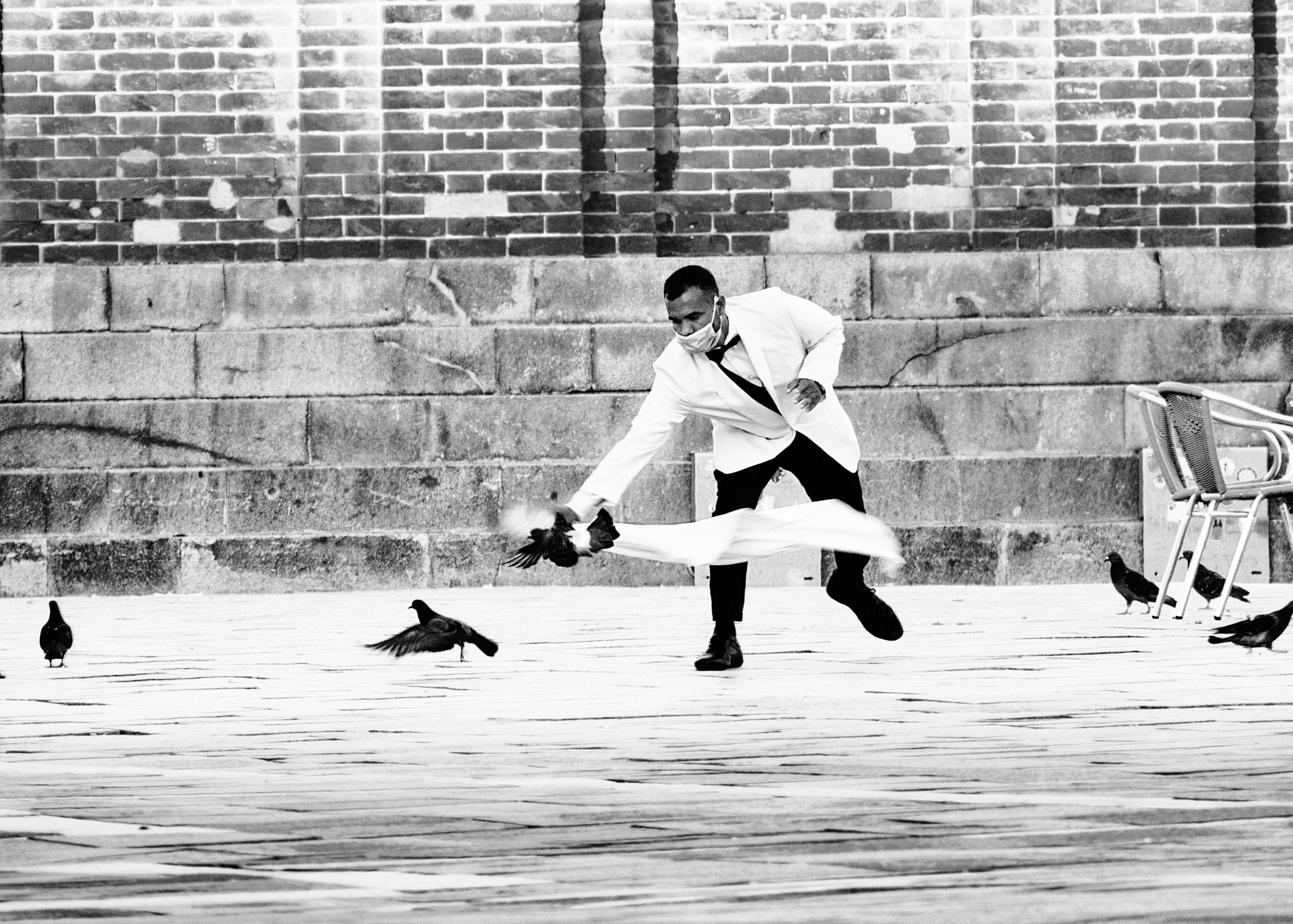 Venice street photography Pigeons Fighter Aleksandra Rowicka