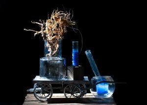 Amortality 5th Dimension Project by Inga Falkowska and Aleksandra Rowicka